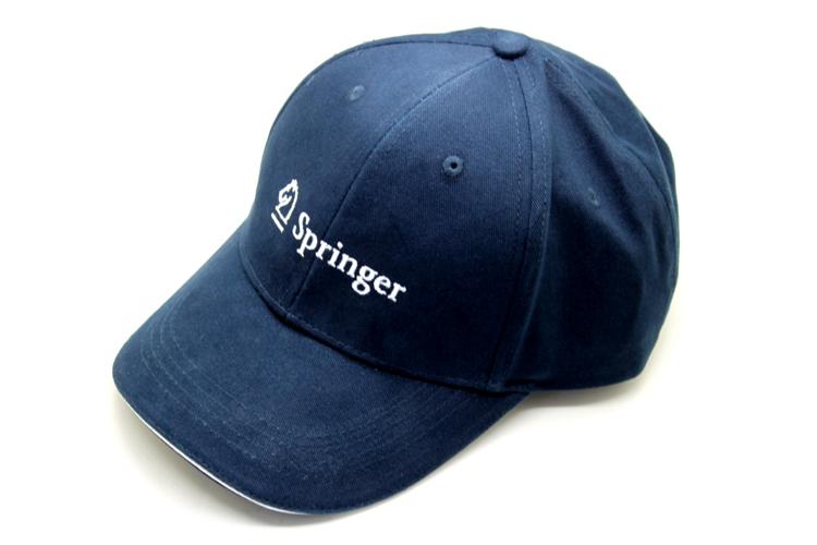 Springer 施普林格礼品案例