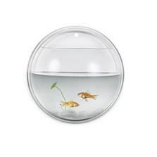 圆形壁挂式亚克力鱼缸 创意礼品)