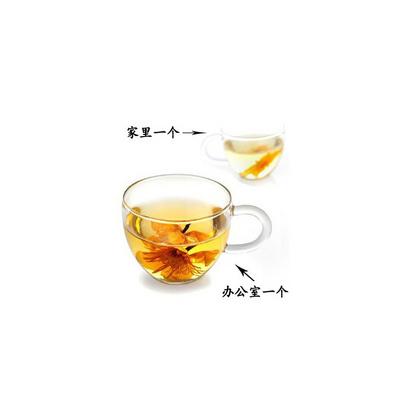 耐熱玻璃杯子 花茶杯品茶杯帶手柄批量定制