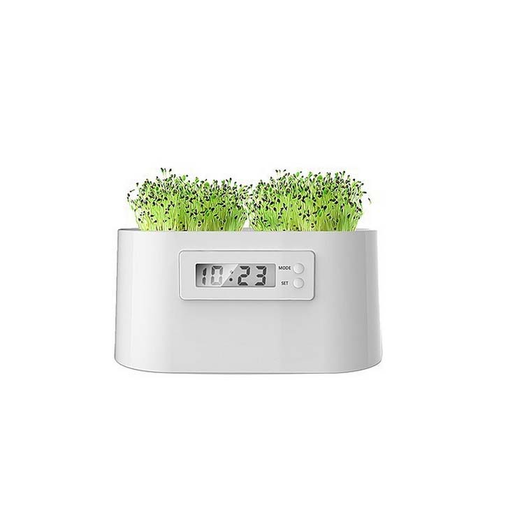 植物电能时钟 微电站时钟定制