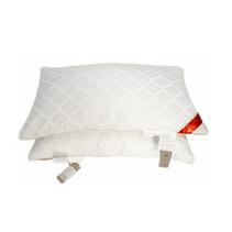 張柏芝代言南方寢飾健康減壓枕定制