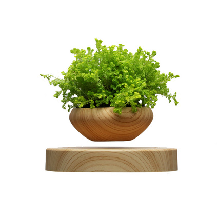 磁悬浮盆栽 植物花盆实木摆件悬空 花盆无植物定制