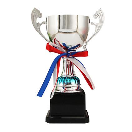 鍍銀色金屬獎杯鍍銀色金屬獎杯學生獎杯25cm定制