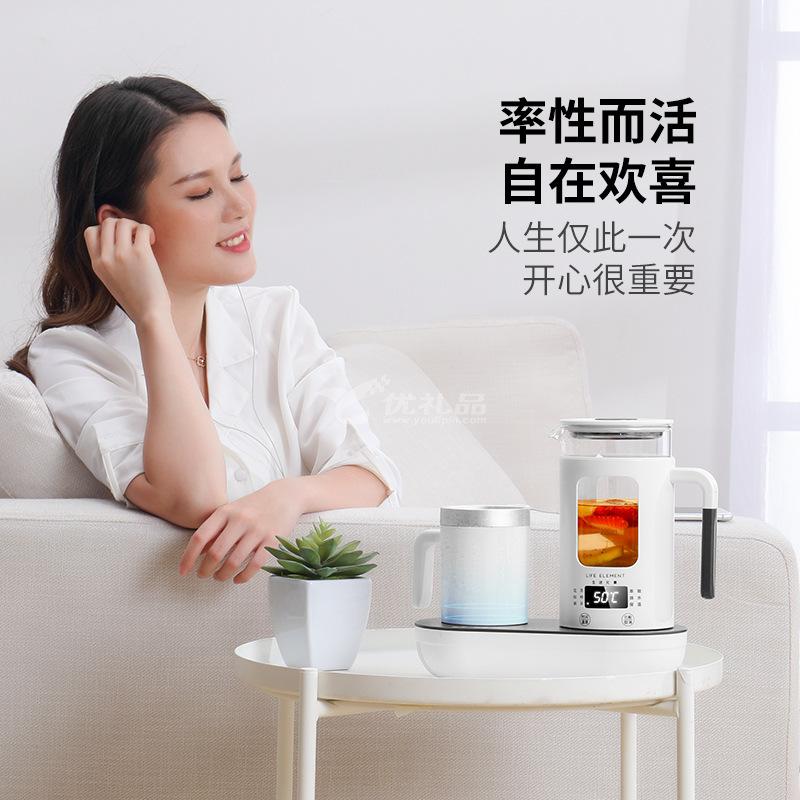 生活元素I47冷熱電水壺制冷兩用多功能煮茶器養生壺定制